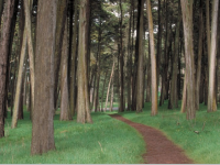 image-from-the-presidio-trust